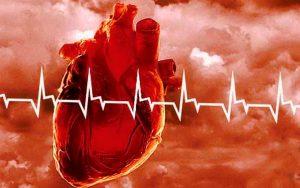 Водный прополис при заболеваниях сердечно-сосудистой системы