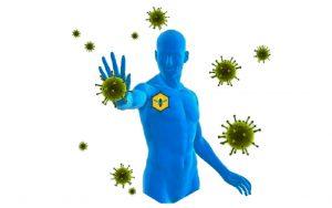 Лечение прополисом - восстановление иммунитета