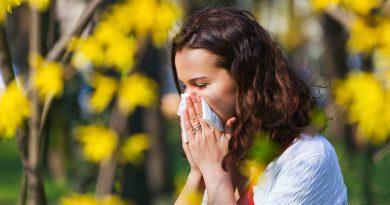 лечение насморка прополисом